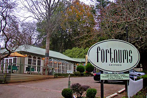 Fortnums Restaurant - Yarra Valley Accommodation