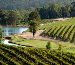 Brookhampton Estate Vineyard - Yarra Valley Accommodation
