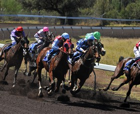 Alice Springs Turf Club - Yarra Valley Accommodation