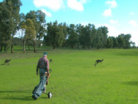 Coffin Bay Golf Club - Yarra Valley Accommodation