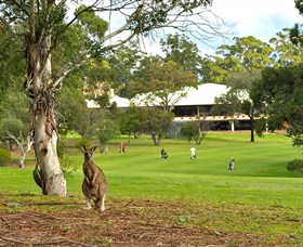 Pambula Merimbula Golf Club - Yarra Valley Accommodation
