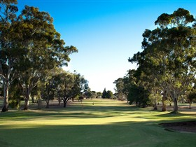 Loxton Golf Club - Yarra Valley Accommodation
