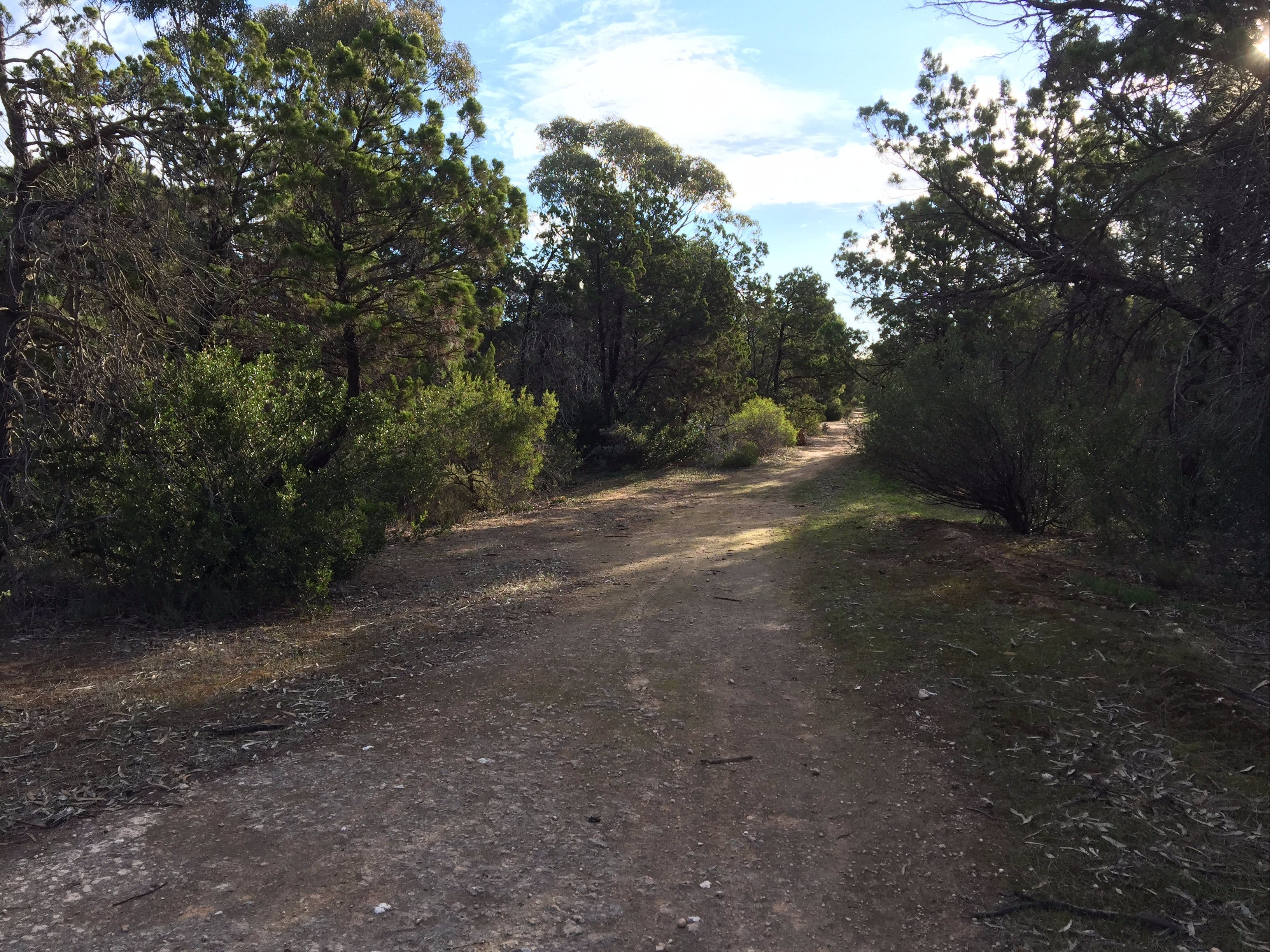 Victoria Park Moonta monthly walks - Yarra Valley Accommodation