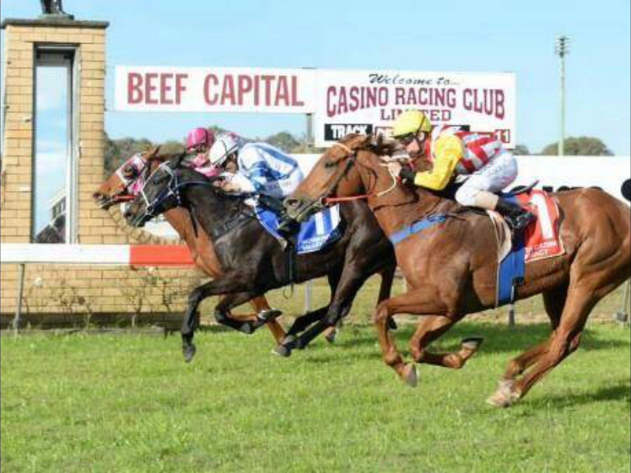 Casino Cup - Yarra Valley Accommodation