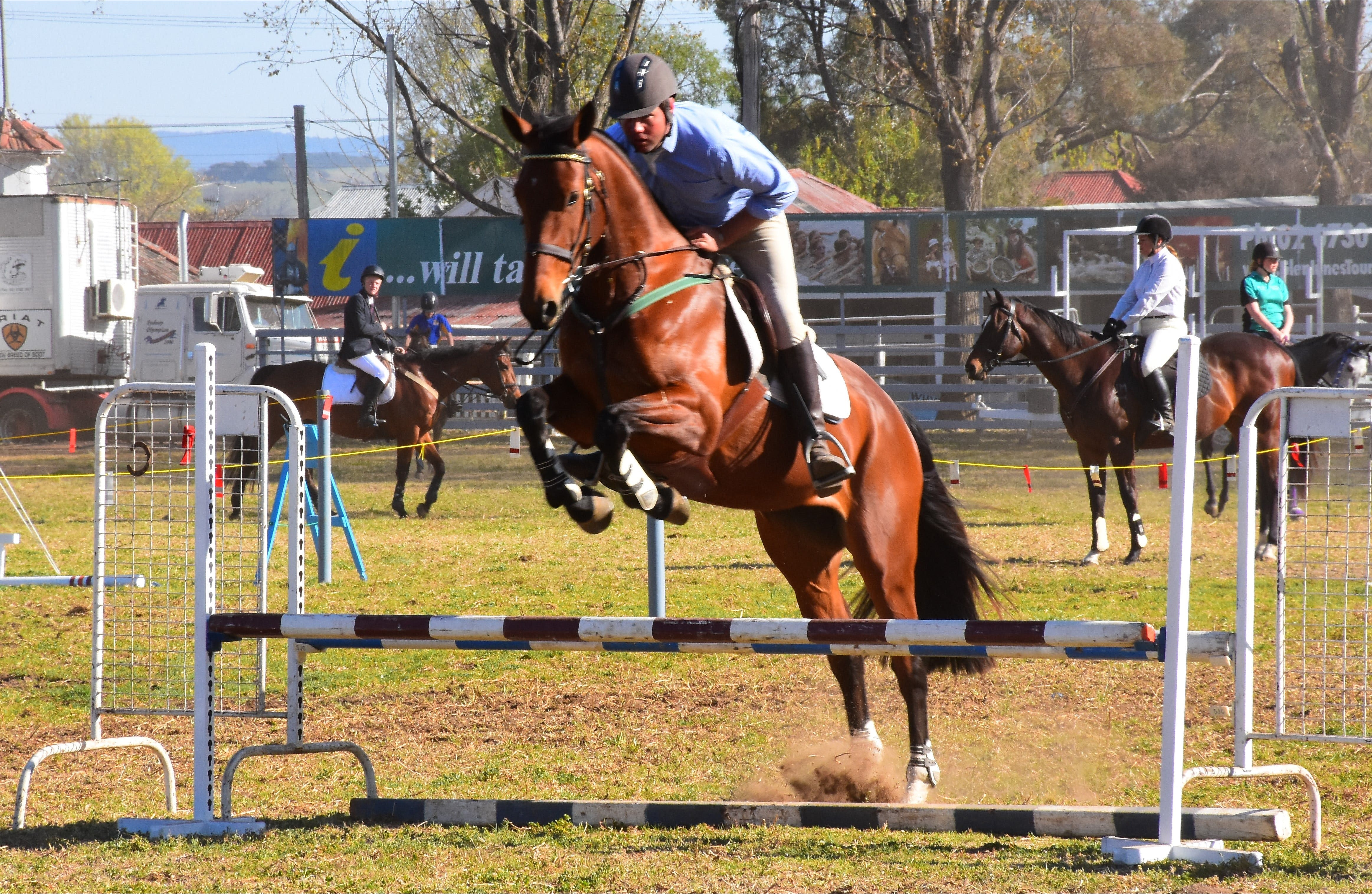 Glen Innes Pastoral and Agricultural Show - Yarra Valley Accommodation