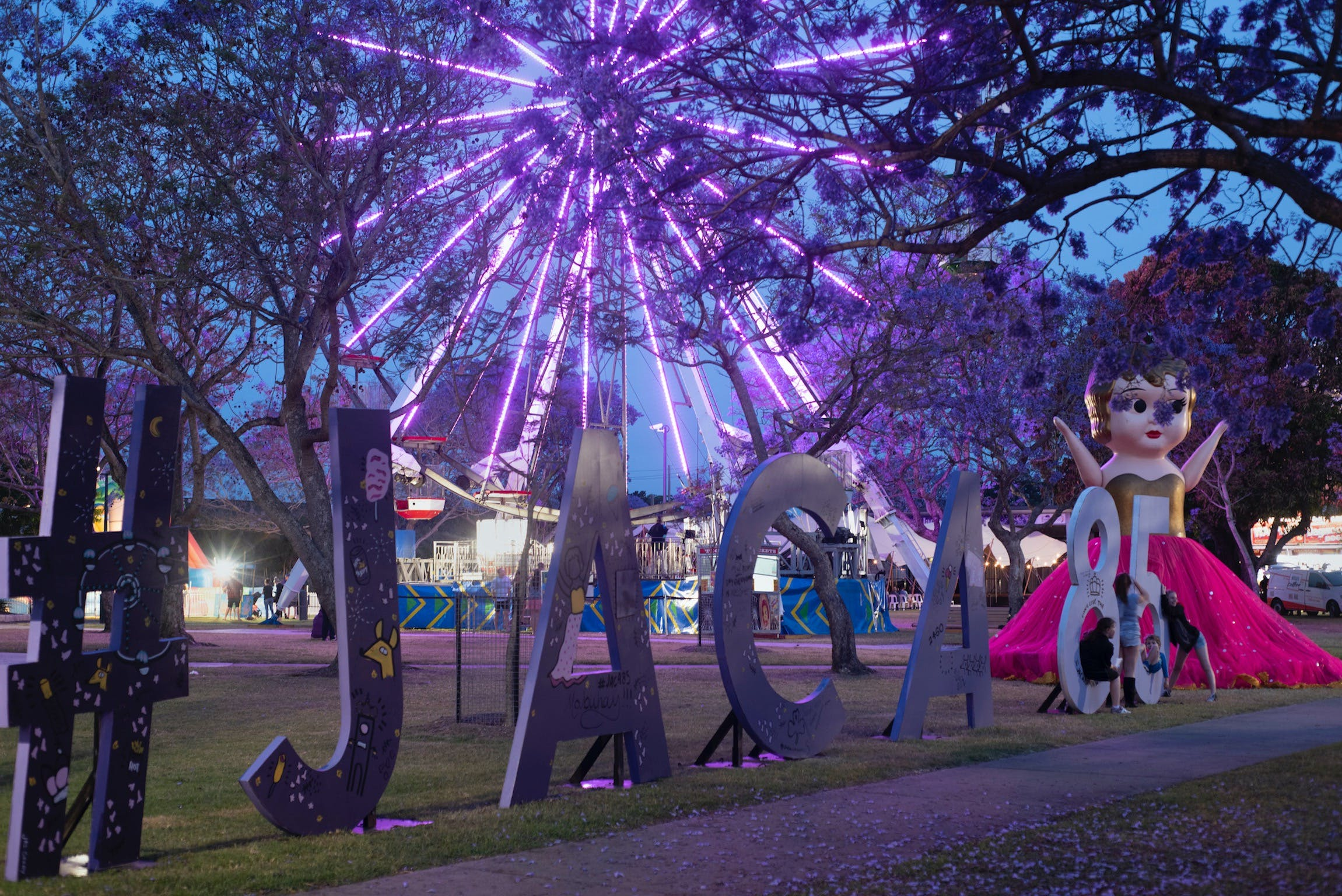 Grafton Jacaranda Festival - Yarra Valley Accommodation