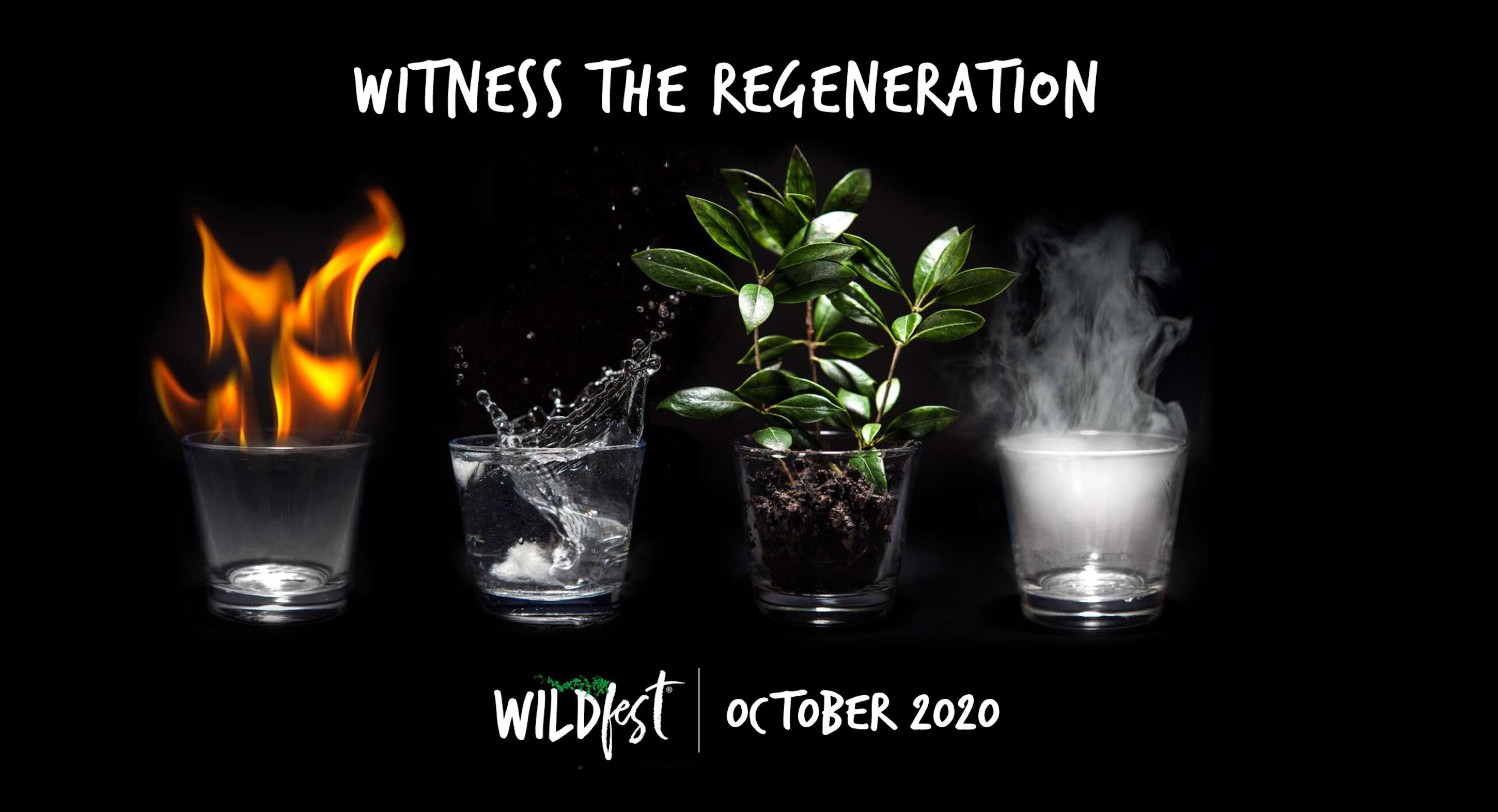 Wildfest - Annual Festival - Yarra Valley Accommodation