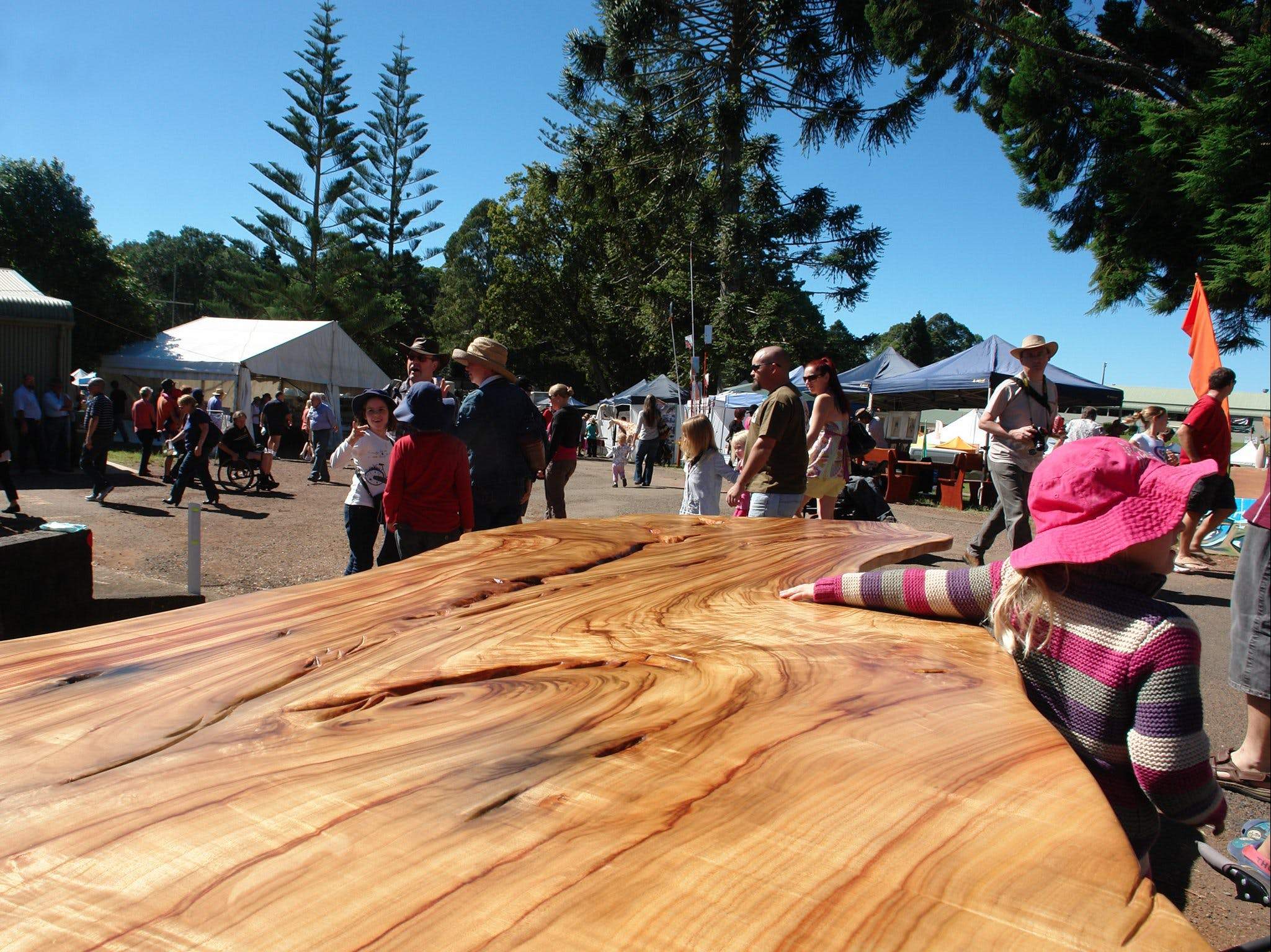 Maleny Wood Expo From Seed to Fine Furniture - Yarra Valley Accommodation